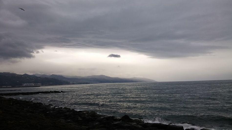 Nofilter Noedit Sea Sky Clouds Morning Loving