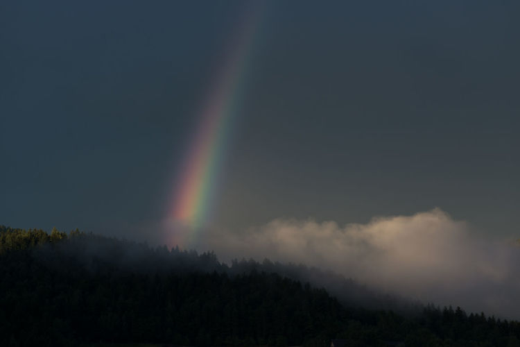rainbow from
