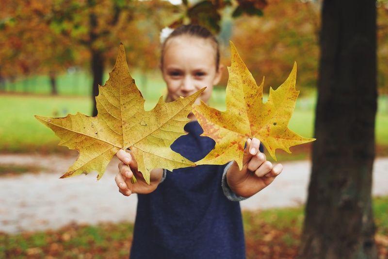 Girl Holding Autumn Leaves In Park