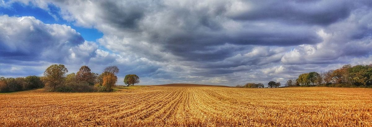 heartland Illinois Cloud - Sky Agriculture Landscape Field Rural Scene Dramatic Sky Panoramic Outdoors Plowed Field Harvest Harvest Season Harvested Corn Cornfield Fall Autumn Farm Clouds Sky EyeEm Best Shots EyeEmBestPics Galaxy S6 EyeEm Best Shots - Nature Nature Photography EyeEm Best Shots