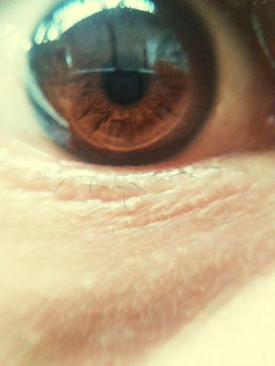 Kedirilagi Kediri Kediriexplore Mojo Explore Mojo Kedirikusukasuka Kedirihits Human Eye Human Body Part One Person Eyesight Real People Eyelash Adult Eyeball Close-up Human Face Iris - Eye Sensory Perception One Man Only Only Men Portrait Adults Only Day Outdoors Young Adult People