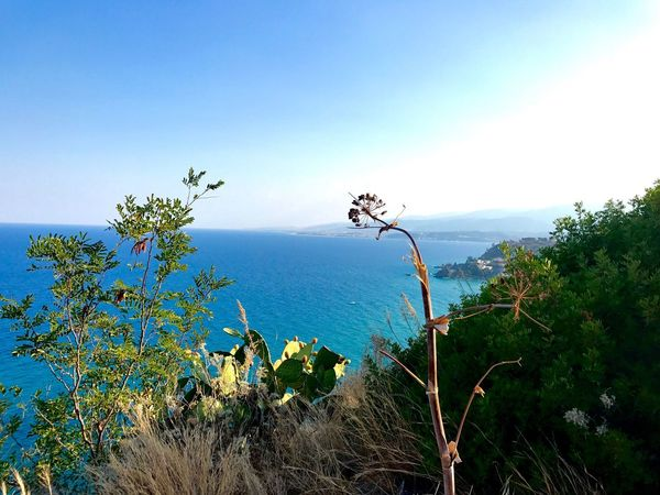 Calabria Italia Italy Landscape Landscape_Collection Landscape_photography Seascape Sea Beauty In Nature Outdoors Horizon Over Water Sky Blue Mare The Great Outdoors - 2017 EyeEm Awards Beautiful Nature Clear Sky Sea And Sky The Week On EyeEm