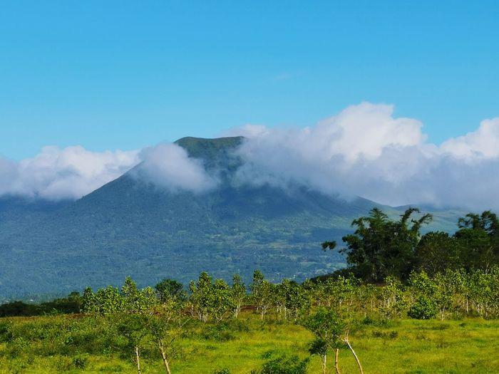 Mount Lokon Tree Mountain Blue Sky Landscape Cloud - Sky Volcanic Crater Volcano Active Volcano