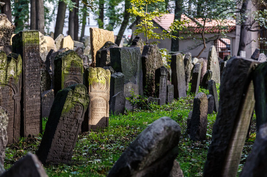 Cemetery Day Grave Gravestone Graveyard Jewish Cemetery Memorial Nature No People Outdoors Religion Spirituality Stone Material The Past Tombstone