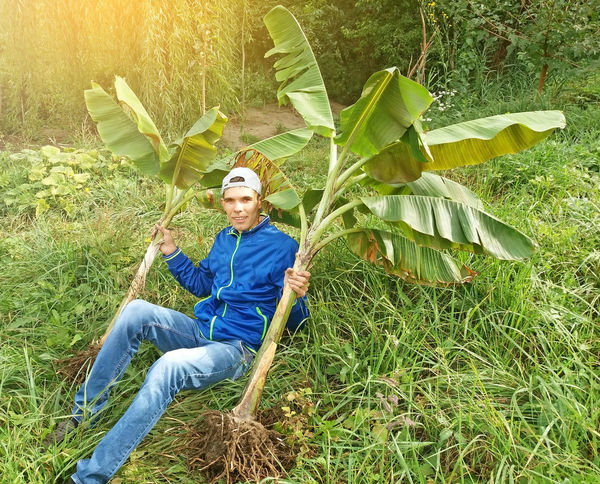 Model working with banana plants Model Bananatree Bananaplant Tropics Bananas Portrait Looking At Camera Rural Scene Tree Smiling Agriculture Grass Green Color Casual Clothing