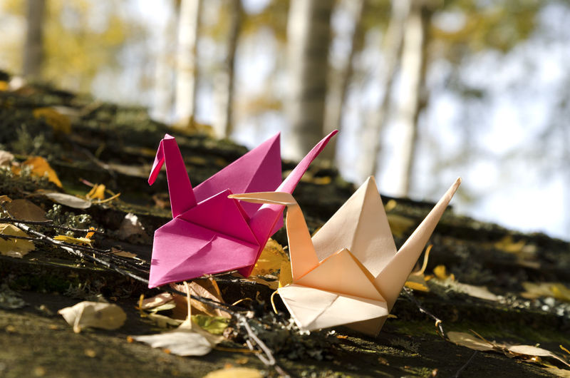 Close-up of paper toy on land
