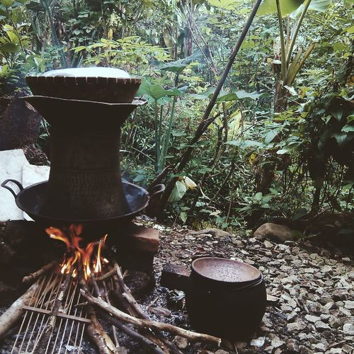 Traditional Cooking Indonesia Flame Nature Outdoors Tradition Traditional Cooking INDONESIA