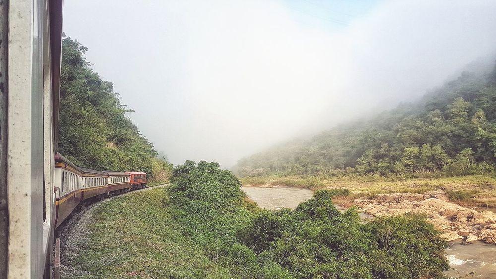 Train Geen Natural Travel Lifestyles Llifestyle Life Thailand Spraying