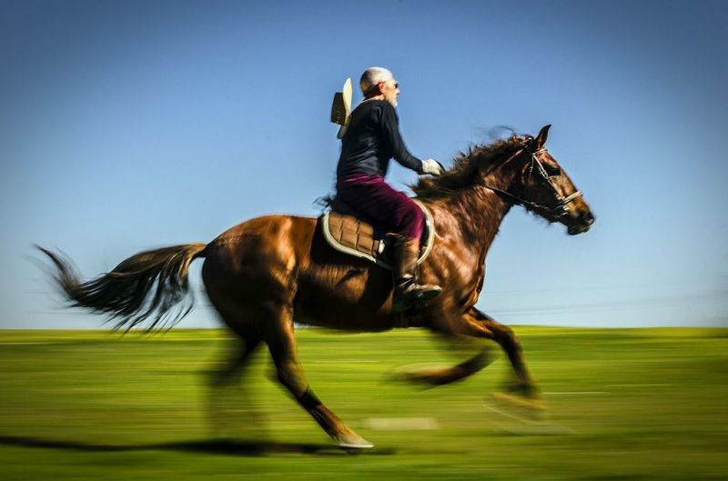 Side View Of Man Horseback Riding On Field Against Clear Blue Sky