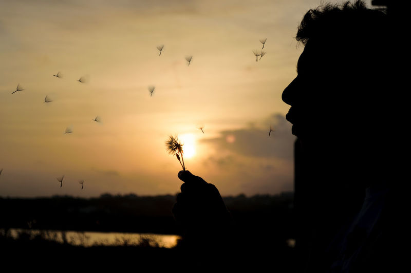 Beauty In Nature Dandelion Flying Lifestyles Nature One Person Outdoors People Real People Silhouette Sky Sunset Taraxacum Break The Mold Sunset_collection EyeEm Best Shots TPCM Paint The Town Yellow Be. Ready.
