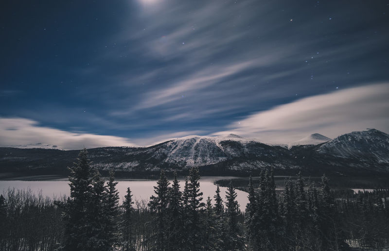A night in the Yukon Betterlandscapes Frozen Yukon Yukonterritory Canada Mountain Life Sky EyeEm Selects Night Nightphotography Night Lights Night View Night Photography Stars Colors Clouds And Sky Clouds Cloud Landscape Landscape_photography Tree Trees Lake Frozen Lake Frozen Water
