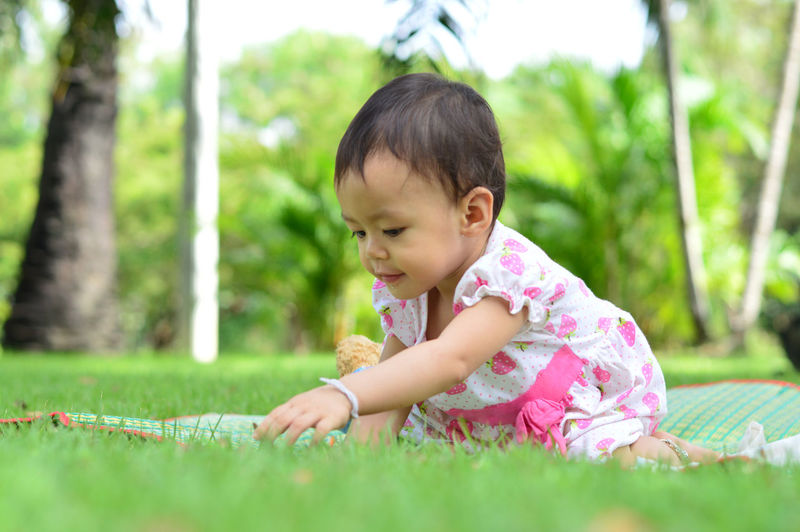 Asian baby girl playing in park. Child Childhood Grass Plant Innocence One Person Playing Offspring Baby Full Length Brown Hair Young Day Casual Clothing Nature Tree Clothing Leisure Activity Outdoors