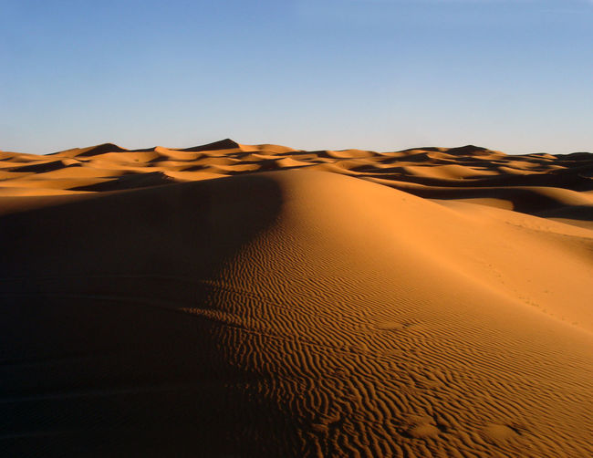 Morocco Perspectives On Nature Sahara Desert Arid Climate Clear Sky Desert Extreme Terrain Heat - Temperature Landscape Nature Remote Sand Sand Dune