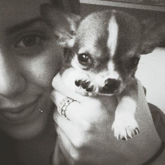 furry baby!! Puppy Love Hi! Cheese!