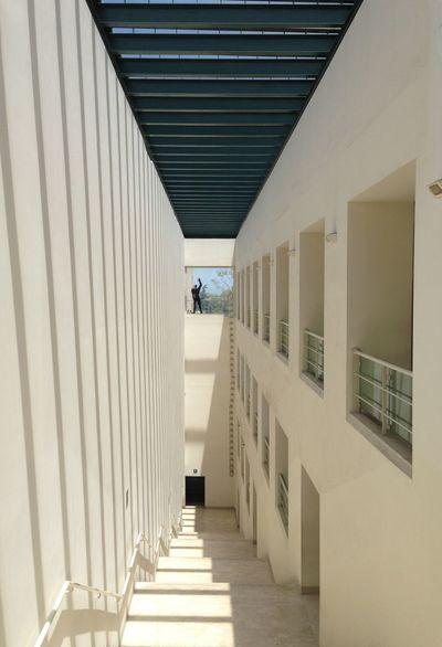Facoltà_di_architettura Palermo Sicily Architecture ARCHITECT Light And Shadow White Modulor Lecorbusier Artist