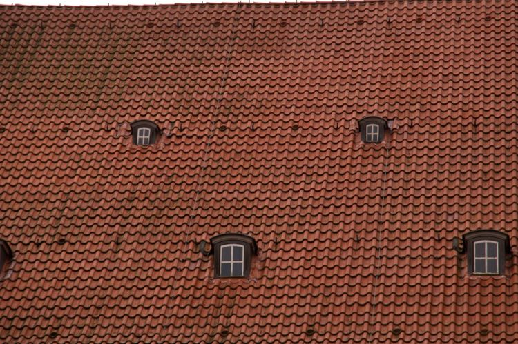 Kirchendach - church roof Dachfenster Dachpfanne Roof Architecture Attic Backgrounds Building Exterior Built Structure Close-up Dach Dachstube Day Full Frame Garret Garret Window No People Outdoors Recluse Roof Tile Rooflight Shelter Textured  Window First Eyeem Photo