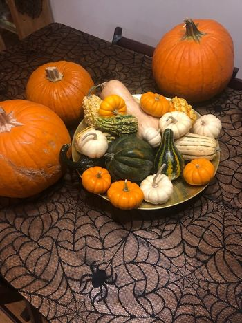 Food Food And Drink Pumpkin Vegetable Healthy Eating Wellbeing Freshness Autumn Holiday - Event Squash - Vegetable Halloween