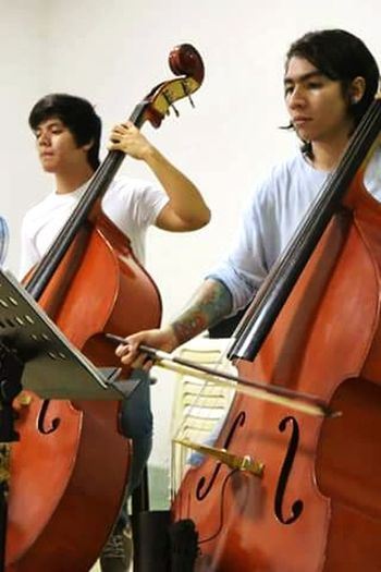 Music Double Bass Atack Freedom Whit My Master Instruments