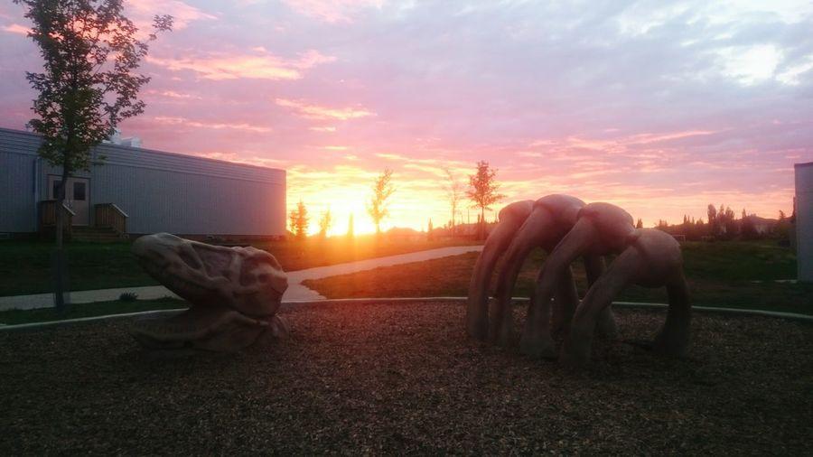 Sunrise morning summer ending