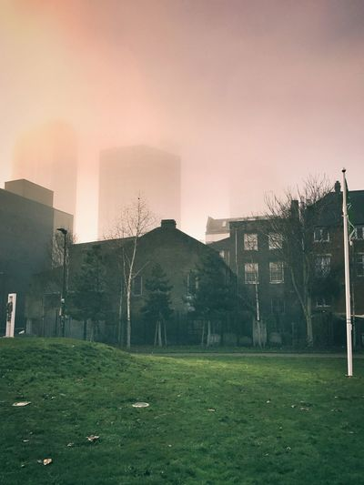 Built Structure Architecture Building Exterior Tree House No People City Sky Residential Building Outdoors Nature Day Christmastime London Foggy Urban Landscape Shoreditch The Week On Eyem