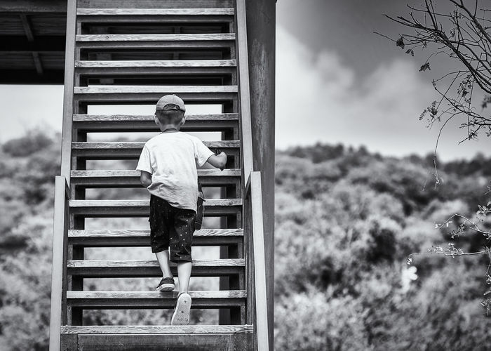 Rear view of boy climbing wooden steps outdoors
