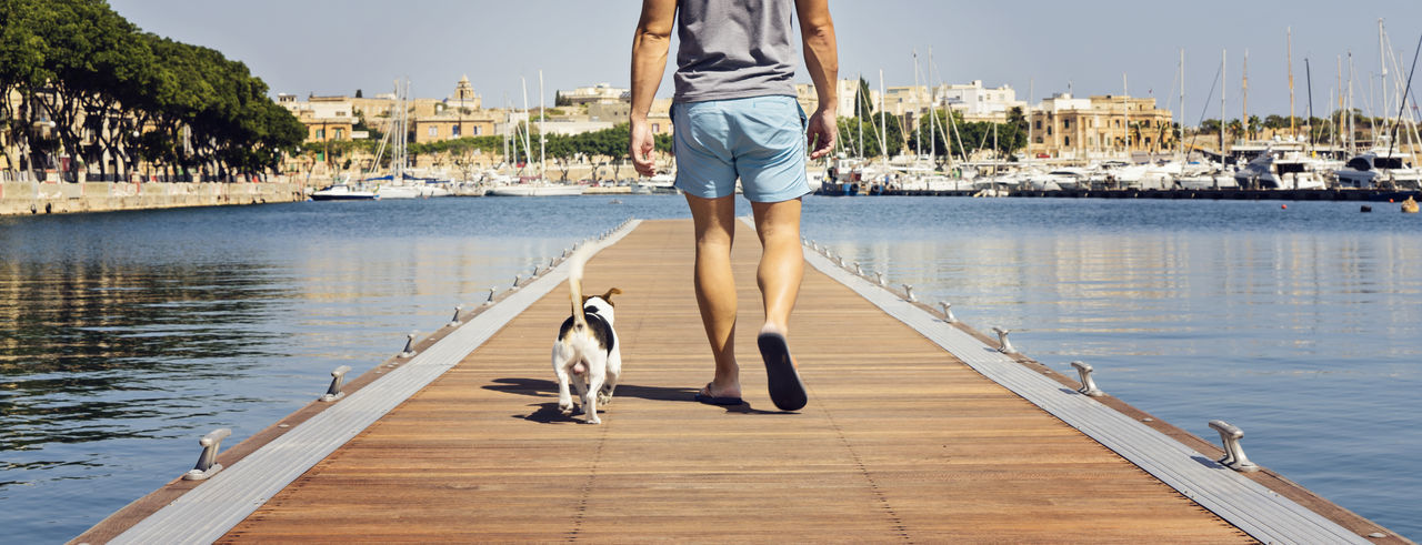 Low section of man walking with dog on pier over sea