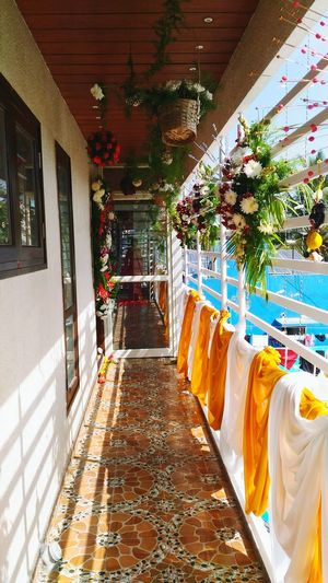 Interior Balcony Flowers Decoration Rituals House Warming Ceremony Blue Orchids Purple Orchids Orchids Anthorium Flower Multi Colored Luxury No People Indoors  Day Architecture
