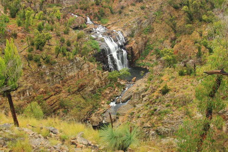 The view of McKenzie Falls from Bluff Lookout in Grampians National Park. Australia Australian Landscape Grampian National Park The Grampians Travel Victoria, Australia Australia & Travel Nature Scenics Travel Destinations Waterfall