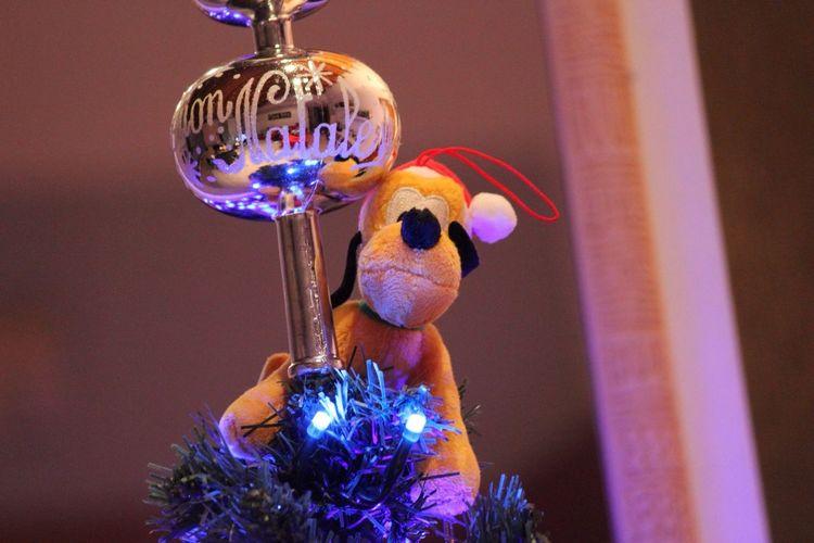 Pluto Xmas Xmas Tree Xmastree