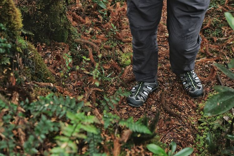 Low section of man standing on leaves in forest