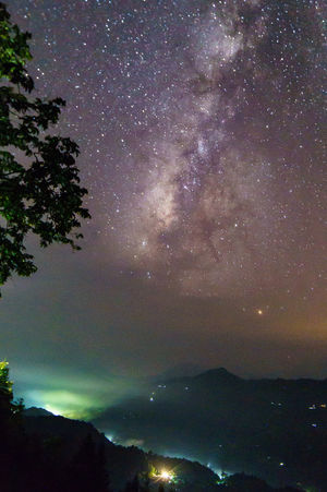 Milky way in Hoang Su Phi, Ha Giang, Viet Nam. Beauty In Nature Galaxy Milky Way Nature Night No People Sky Tree