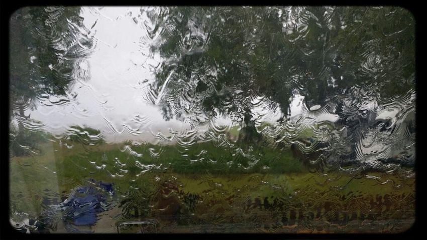 Raining! Rain Downpour
