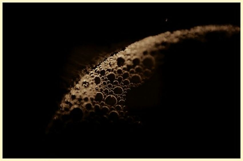 Wine bubbles Black Background No People Drink Bubbles Goblet Wineglass Wine Close-up Circles Food And Drink