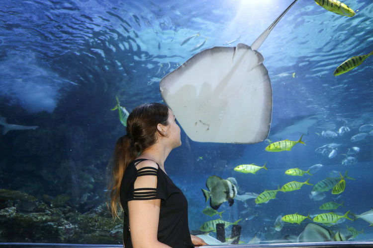 Side view of young woman looking at fish swimming in tank at aquarium