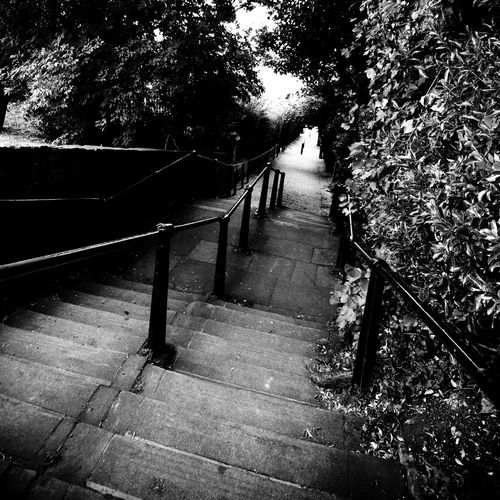 Concrete Stairs Diminishing Perspective Essex Coast Leigh On Sea Leigh Steps Long Narrow Paula Puncher Railing Stairs Stairs Steep Steps Steps The Way Forward Vanishing Point View Down Steep Steps Walkway