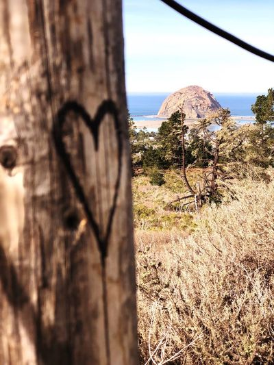 Lovers View EyeEmNewHere Field Wooden Post Hearts In Nature Morro Bay Rock Day Tree No People Nature Outdoors Sunlight Mountain Beauty In Nature EyeEmNewHere