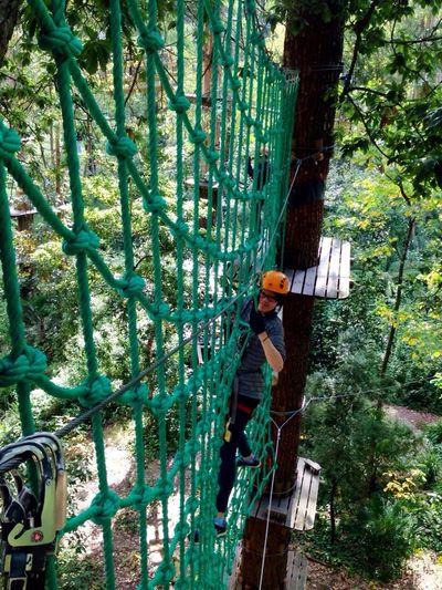 Adventure Tree Climbing Instagood Rope Strength