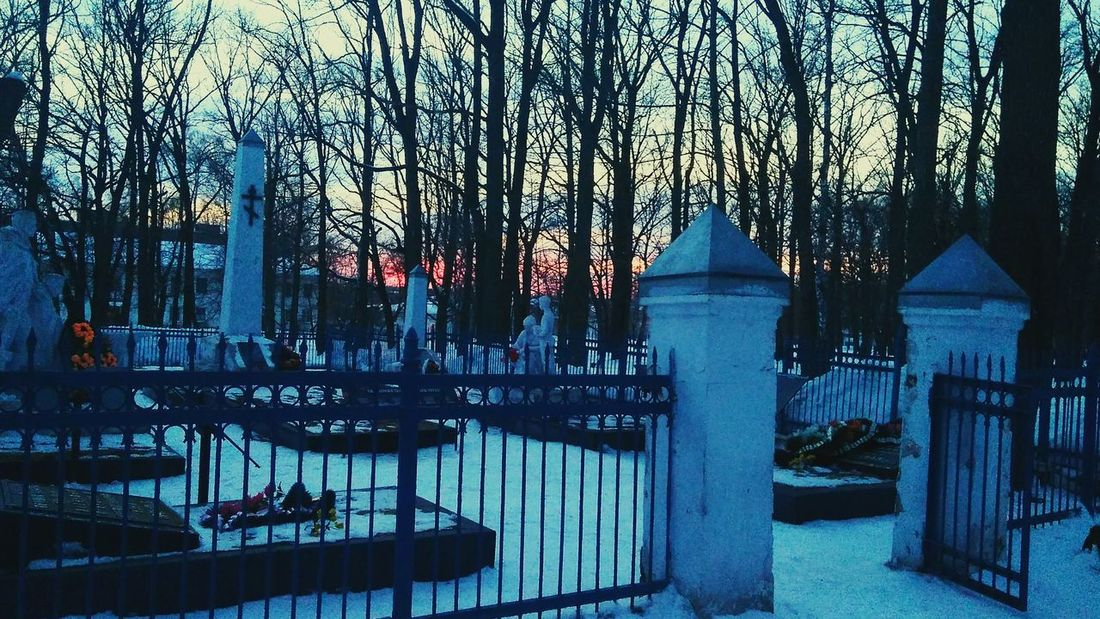Cemetery 3XSPUnity 3XSPhotographyUnity 3XSPUnity EyeEm Trees Tree Trunk Evening Winter Snow Beauty In Nature War Cemetery Russia Russian Cemetery Red Army Tree Sky Architecture Frozen Cold Temperature