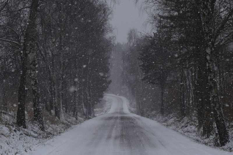 Empty road along on snowy day