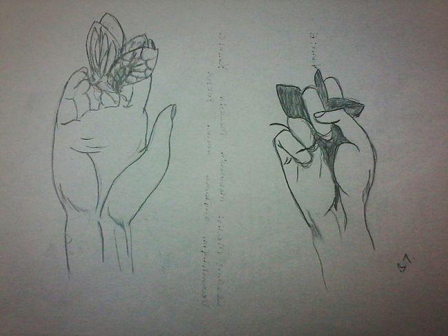 Butterfly Hands Dead