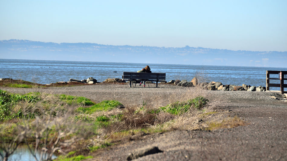 Haywards Landing 14 Old Ferry Landing 1850's Hayward Regional Shoreline Park Marsh Tidal Wetlands Couple Sitting On Bench Scenic San Francisco Bay San Francisco Bay Trail Fog Nature Beauty In Nature Nature_collection Shoreline Pond Inlet Marin Headlands Landscape_Collection Landscape_photography