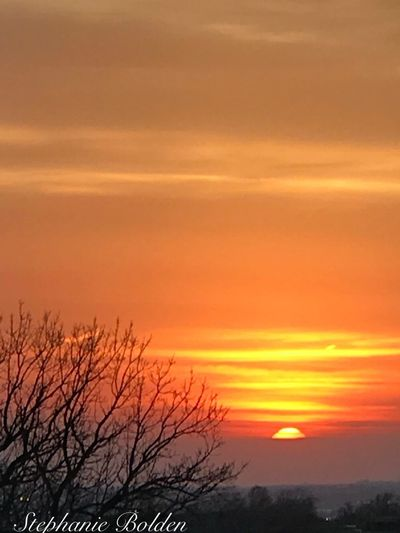 Beauty In The Sky Watching The Sun Set Sun Setting Low In The Sky Sunset Sky Orange Color Beauty In Nature Scenics - Nature Cloud - Sky Tranquility Bare Tree Tranquil Scene Nature Outdoors Romantic Sky No People Sun Tree