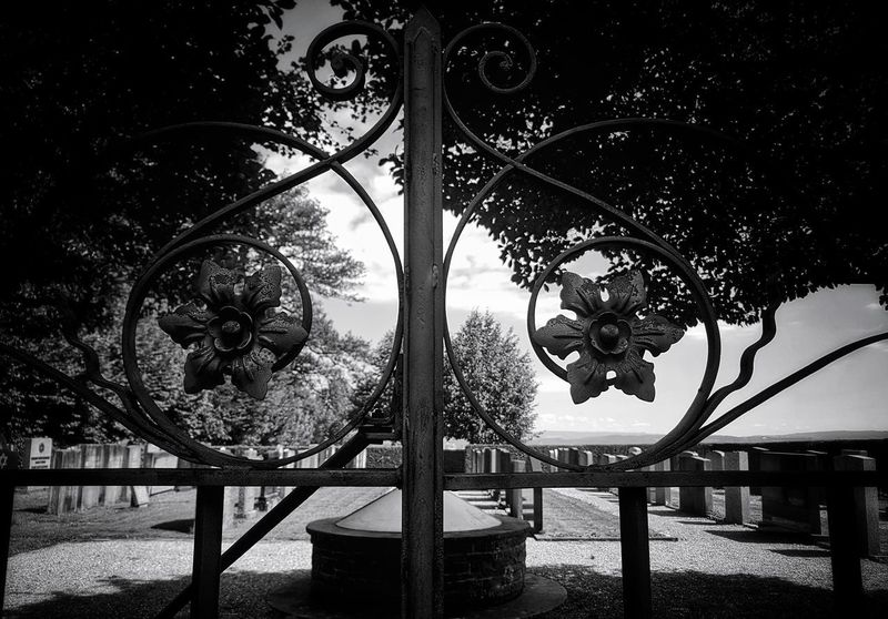 No People Outdoors Hanging Tree Scenics Tranquility First Eyeem Photo Taking Photos My Point Of View A Fine Day To Exit Black & White Photography Monochrome Photograhy Black & White Monochrome Photography Architecture Jewish Cemetery Jewish Cemetery Photography Cemetary Gate Cemetery_shots Cemeteryscape Cemetary Beauty Cemetery The Week On EyeEm