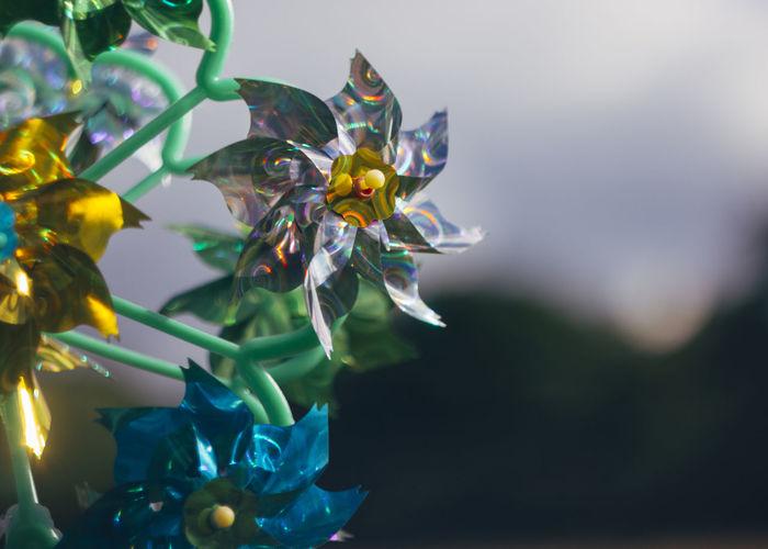 Close-up of pinwheel toys