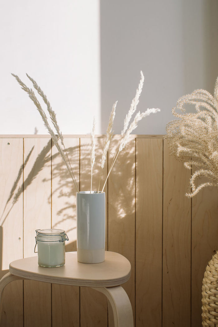 Plant on table against wall at home