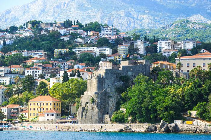 Beautiful coastal town Herceg Novi in the Bay of Kotor, Montenegro Adriatic Sea Bay Of Kotor Beautiful Boka Kotorska Castle Europe Fortress Hercegnovi Holiday Kotor Bay Luxury Travel Montenegro Nature Sea Summer Travel Destinations Vacation