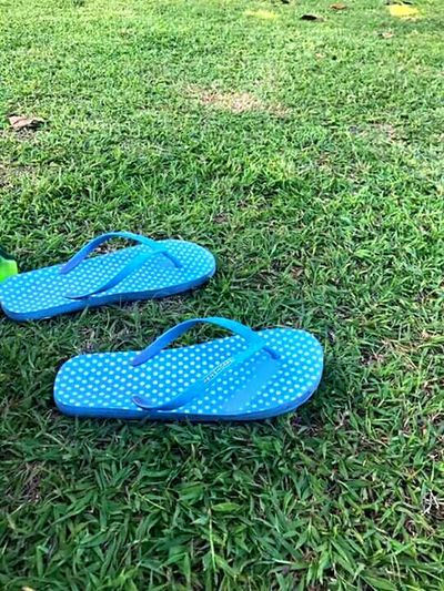 Steps. Outdoors Nature Field Day Green Color Blue Pair Grass Picnic Journey Wanderlust Wander
