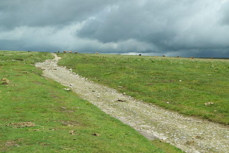 Dartmoor Cloud