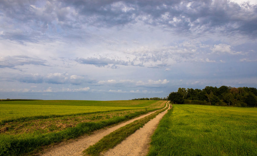 Road in Green Field Road Agriculture Beauty In Nature Cloud - Sky Day Field Grass Green Fields Landscape Nature No People Outdoors Rural Scene Scenics Sky Tranquil Scene Tranquility Tree