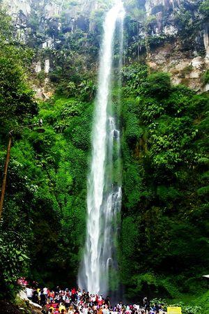 Water Fall Waterfall Green Cold Air Air Terjun Jernih Sejuk